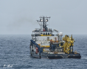 Ocean Patriot working an ROV at the Shenzi field