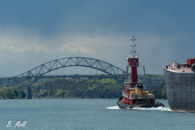 Frederick Bouchard west bound with a light red flag