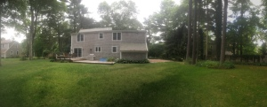 Our new backyard