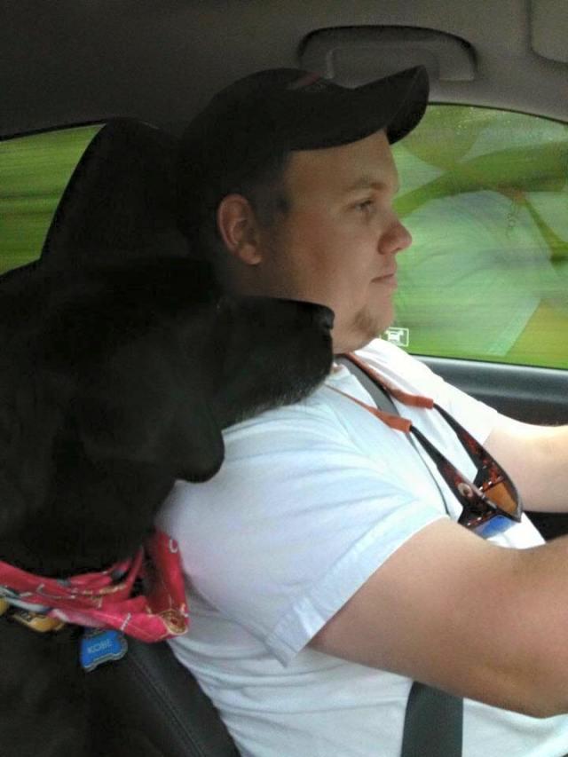 Better than a car seat headrest