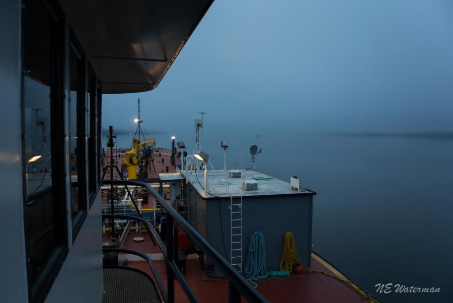A foggy morning in Kingston